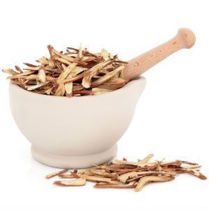 astragalus-root-health